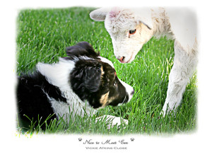 """""""Nice to Meet You"""" Note Card by Vickie Allen Close"""