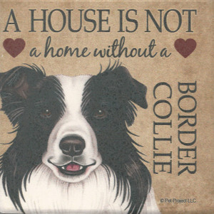 Set of 4 Stone Coasters - A House is not a Home without a Border Collie