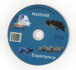Julie Hill's NethHill Experience