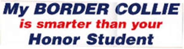 My Border Collie is Smarter Bumper Sticker