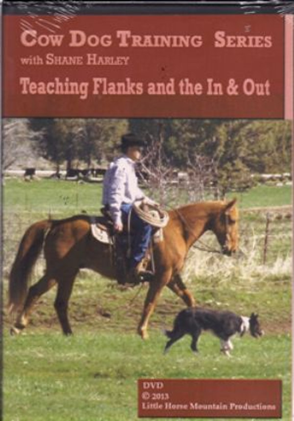 Teach Flanks and the In & Out with Shane Harley
