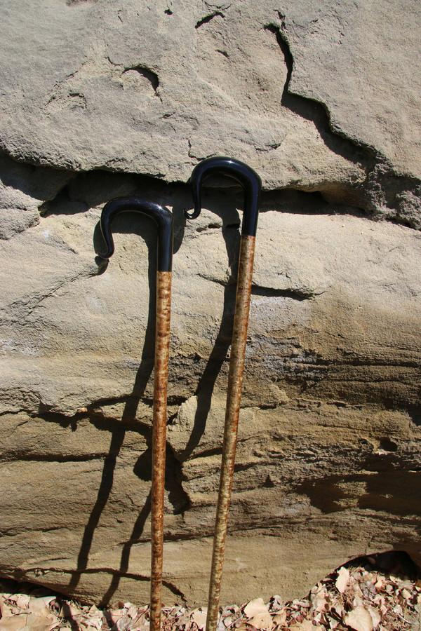 Imported Buffalo Horn Shepherd's Crook