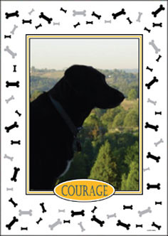 Personalized Pet Photo Flag: Dog   House Size 30 X 40