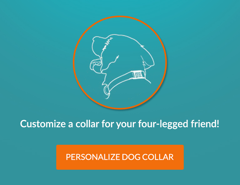 Custom Dog Tags & Collars | Select Orders Ship Free | dogIDs