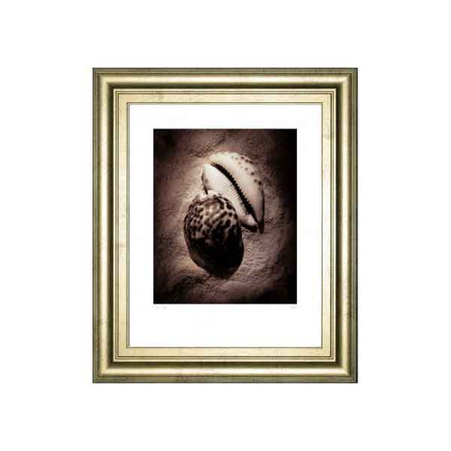 COWRIE BY LAUREL WADE 22x26