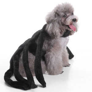 ... Big Spider Costume Clothes For Dogs Chihuahua Clothing Halloween  sc 1 st  Dog Clothes & Dog Costumes: Shop Small u0026 Large Dog Costumes