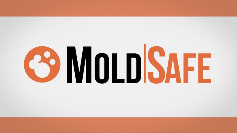 MoldSafe Custom Video