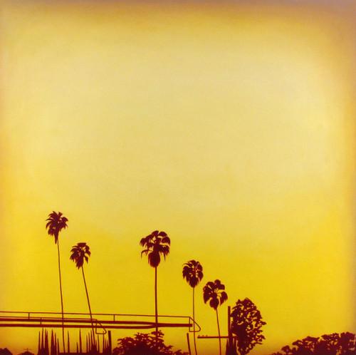 #palmtrees and a #freeway #sunset #losangeles