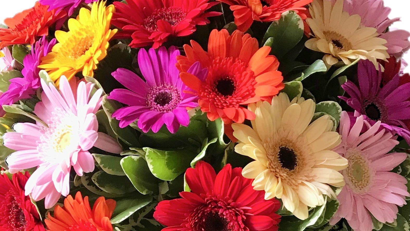 gerbera-bouquet-banner.jpg