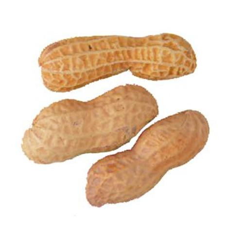 Peanuts In Shell Roast/ No Salt