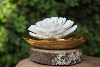 Dream Porcelain Flower Diffuser