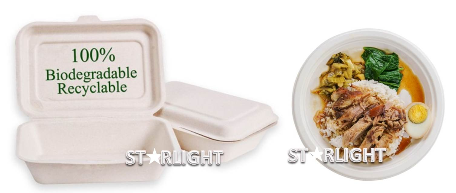 bagasse-range-of-disposable-plates-and-boxes.jpg