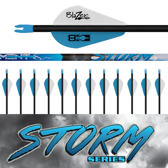 (12) Fletched Storm Arrows