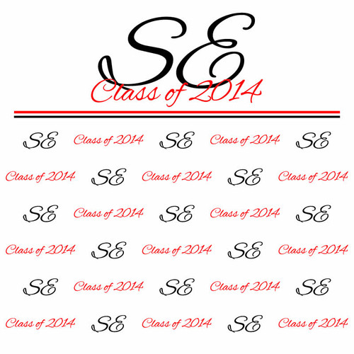 Prom Step and Repeat Backdrop 349