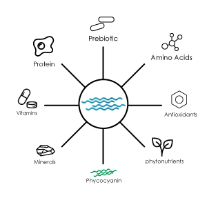 spirulina-complete-food.jpg