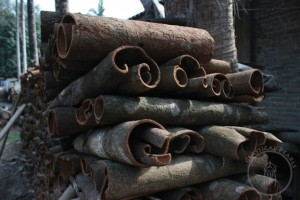 Stacked Rougui from 20-30 year old trees in Hekou, Yunnan