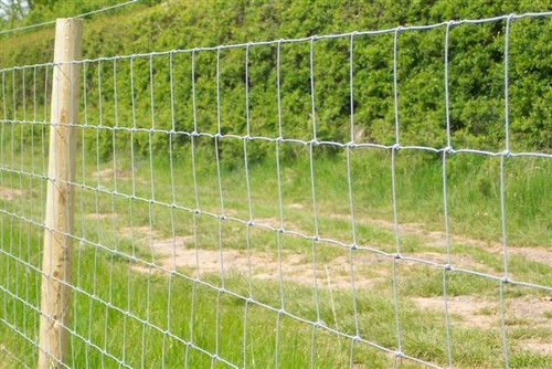 Stockfence 100m - Sheep Fencing 800mm High