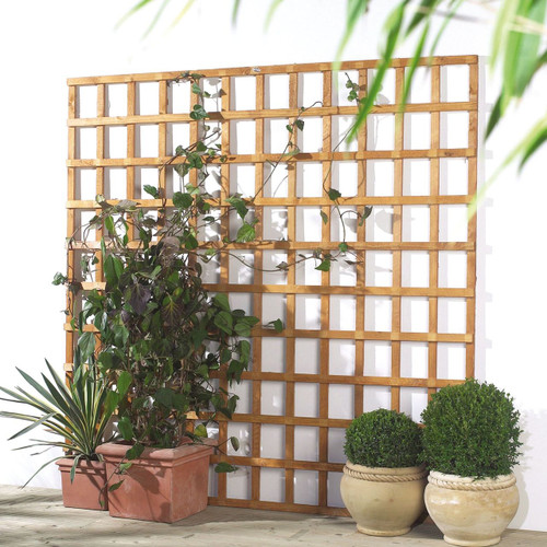 Traditional Square Trellis 1.83m(W) x 1.83m(H) Pressure Treated