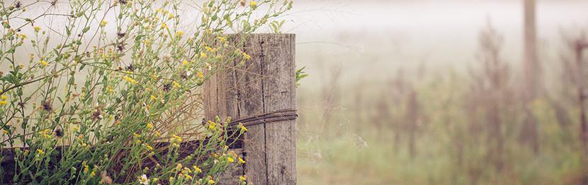 Need a new field gate?