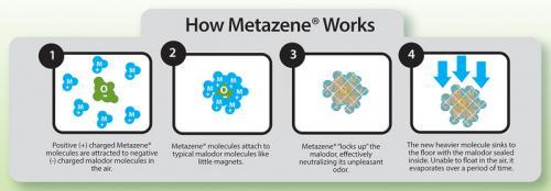 metazene..jpg