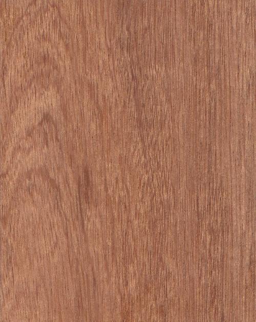 mahogany-notxt.png