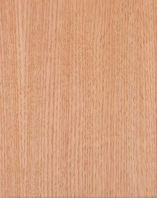 oak-notxt.png