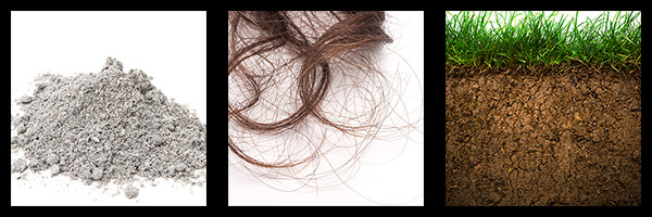 Examples of ashes, strand of hair, ground