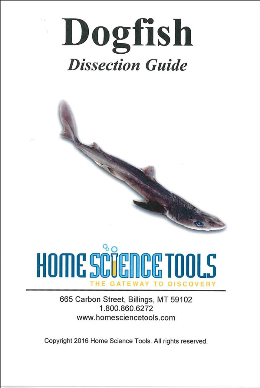 dissection guide shark basic. Black Bedroom Furniture Sets. Home Design Ideas