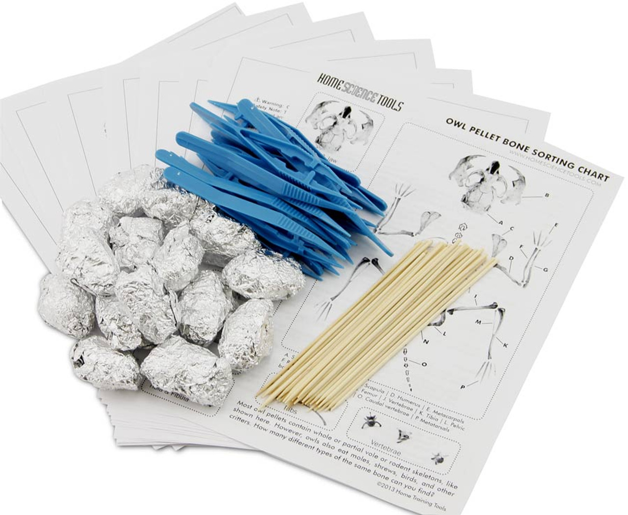 Owl Pellets Kit For Classroom Use Complete Study