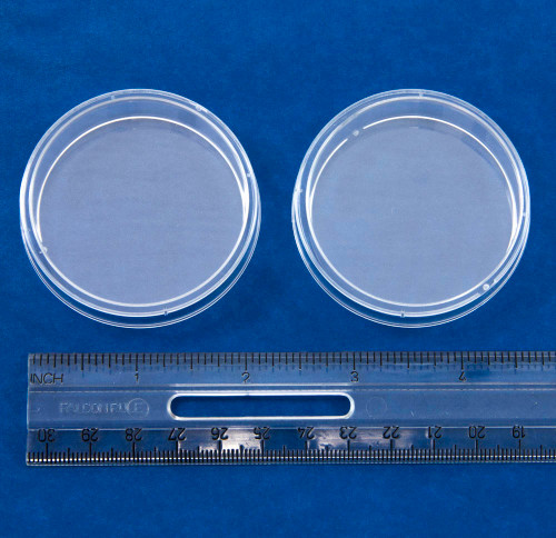 Petri Dishes, plastic, 60 x 15 mm, 2 pack