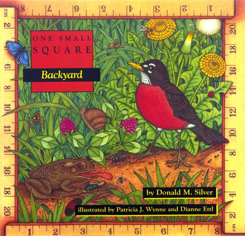 Backyard: One Small Square