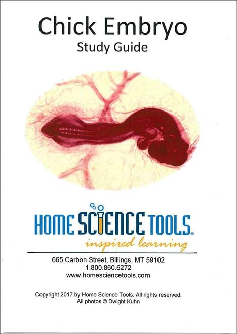 Chick Embryo Study Guide