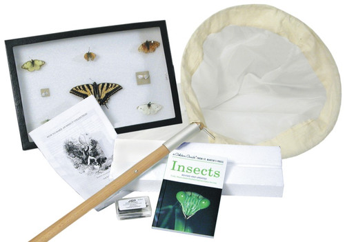 Insect Collecting Kit