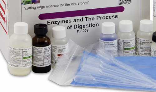 Enzymes and the Process of Digestion Kit