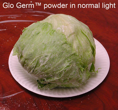 Glo Germ Powder Kit