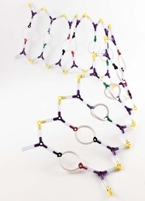 Super Models: DNA Molecular Model Kit