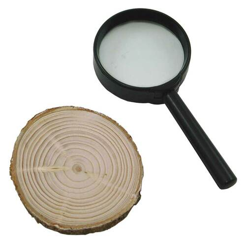 Tree Ring Kit