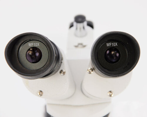 Dual Power Stereo Microscope, 20/40X Model