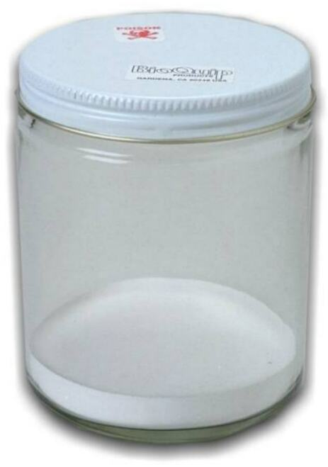 insect collection jar