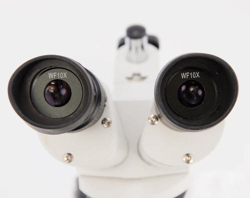 Dual Power Stereo Microscope, 10/30X Model