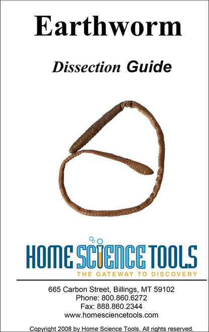 Earthworm Dissection Guide