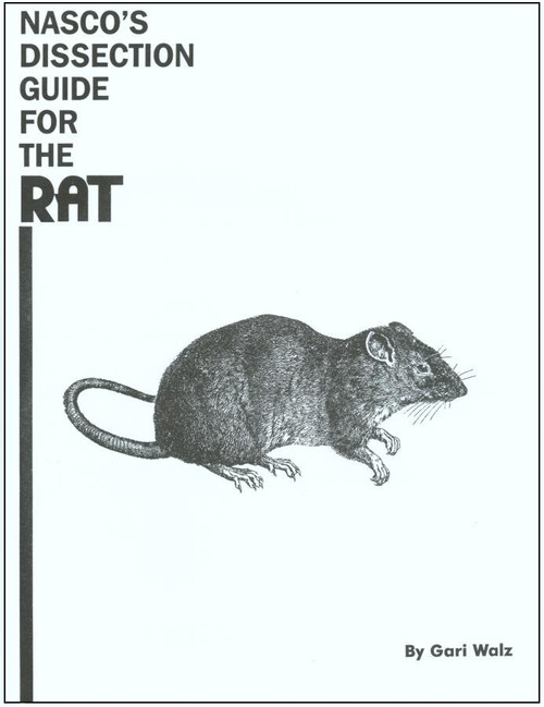 rat dissection guide rh homesciencetools com rat dissection lab guide answers rat dissection guide answers