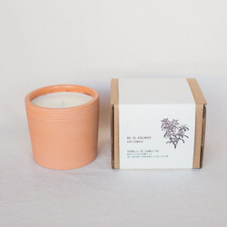 P.F. Candle Co. : Rosemary Terra Candle