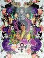 Prince Poster Commemorative Art Print (18x24)