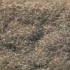 Woodland Scenics FL633 Static Grass Flock, Burnt Grass