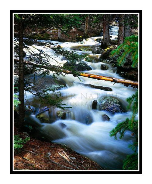Chicago Creek Waterfall in the Woods at Mt. Evans, Colorado 60