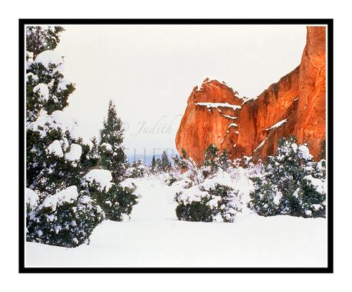 Garden of the Gods Winter in Colorado Springs, Colorado 257