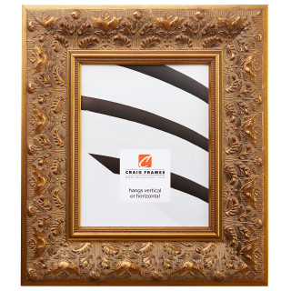 "Borromini 3.5"", Gold & Bronze Picture Frame"