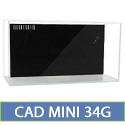 mini-34.jpg