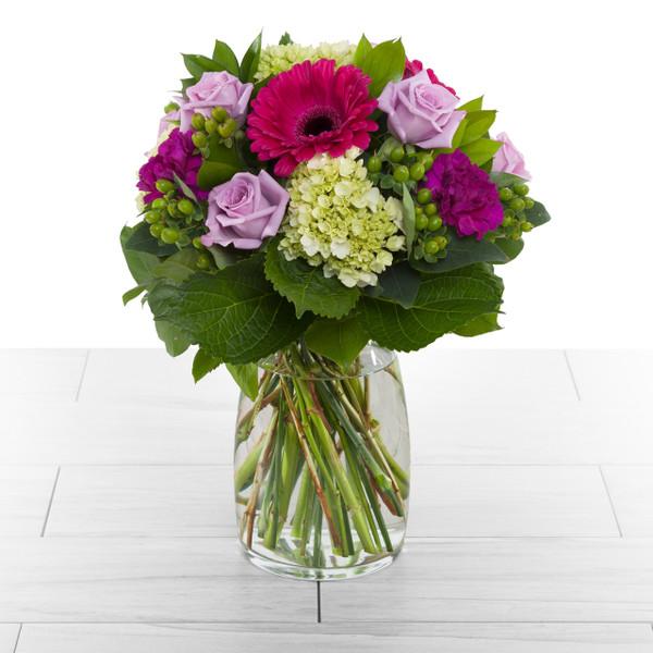 Enchanted Roses - Fuchsia